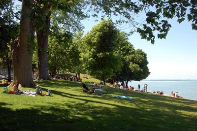 niagara on the lake. 3арисовка 4