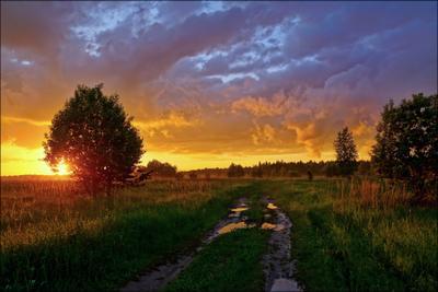 После дождя Тверская область вечер дорога закат