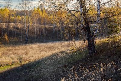 *** природа пейзаж осень татарстан урняк