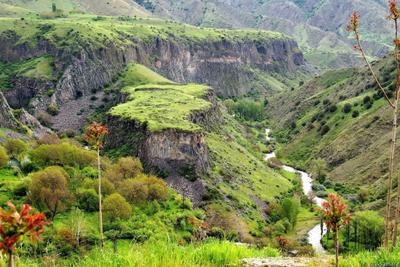 Армения. Ущелье Гарни армения река весна достопримечательность кавказ пейзаж природа путешествие гарни ущелье