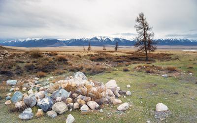 Камни в степи Алтай май 2019 горы