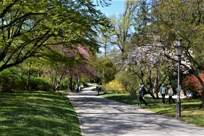 В весеннем парке Парк апрель