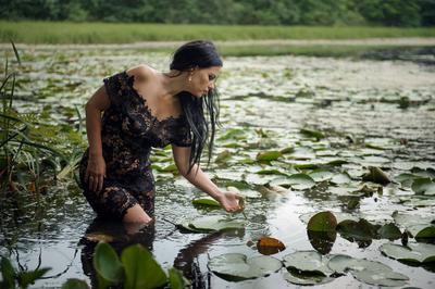***Есть в графском парке черный пруд....Там лилии цветут....