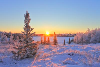 Утро. заполярье крайний север Ненецкий автономный округ