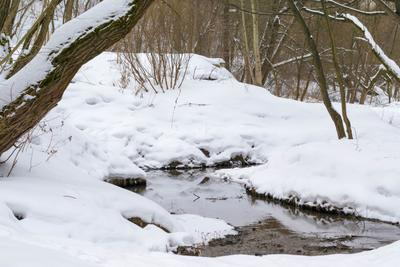 Зимний пейзаж зима снег река январь зябликово москва орехово-борисово южное