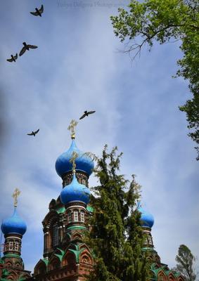 Под Богом и птицами. храм распятье птицы небо купола