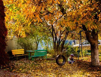 Осенний двор Осень колесо желтый золото лист