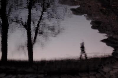 движение в питерском сумраке отражение питер