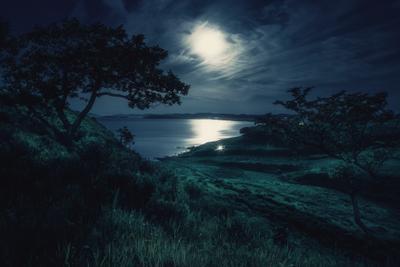 *** луна утро деревья море