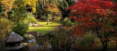 Осень в японском саду философия, мировоззрение и миропонимание