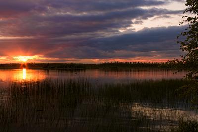 """Карельские """"дали"""" щучьих царств Карелия рассвет озеро трава небо облака красиво"""