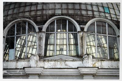 душа вднх вднх ввц ссср павилион окно цветоводство купол
