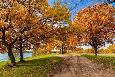 Осень на озере осенний пейзаж озеро