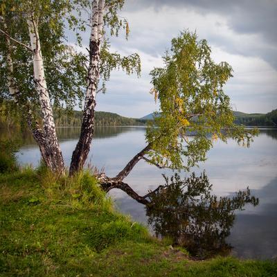 Уходит лето озеро красота березка квадрат россия урал вечер