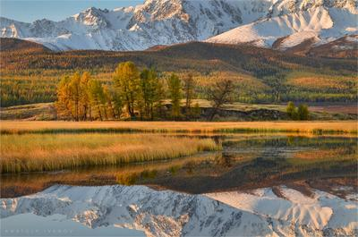 В зеркале горного озера Алтай Ештыкёль Джангысколь озеро осень отражение горы Северо-Чуйский хребет