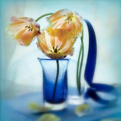 Тюльпаны, тюльпаны поют о весне.