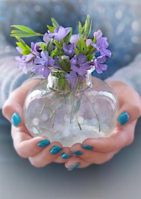 Весна в ладошках весна цветы ладони апрель руки натюрморт