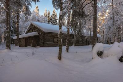На опушке лес изба зима снег