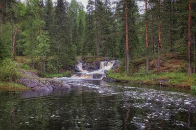 Рускеальские водопады Карелия водопад лес пейзаж