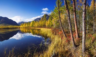 *** Забайкалье Озеро Лиственница Осень Кадарский хребет