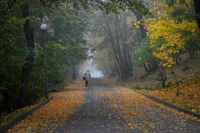Осенний променад...........