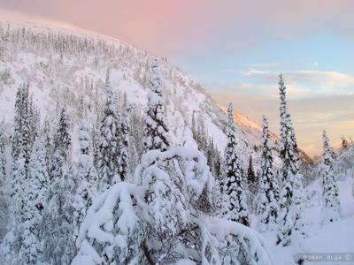 Ущелье зима, гора, сопка, кандалакша, ущелье, мороз, снег, вечер, красота, пейзаж