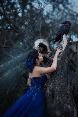 Девушка и ворон девушка платье ворон ведьма