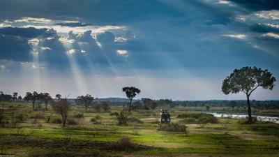 Вперед к приключениям сафари саванна Африка Танзания