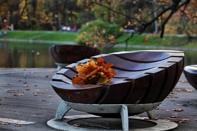 Лишь букет нам осень оставила... парк город листья