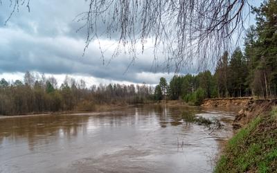река Нея нея река весна природа пейзаж вид вода отдых путешествие