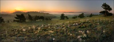 СНЫ СОН-ТРАВЫ... закат, вечер, ай-петри, сон трава, плато, закат