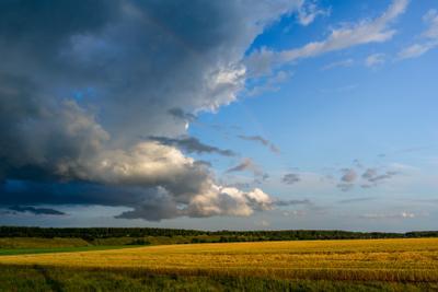 Грозовой фронт Гроза дождь пейзаж поле дорога лето