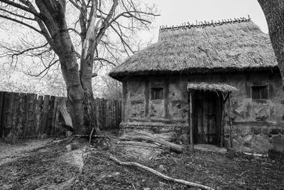 Глазастый домик дом забор окна
