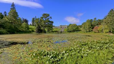 ***  полдень в садах Пауэрскорт... ирландия пауэрскорт сады полдень путешествие пейзаж