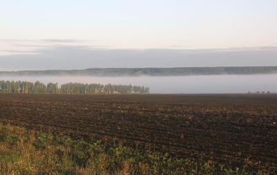 Два горизонта поле туман