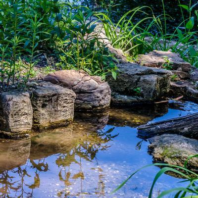 Солнечный день вода отражения камни