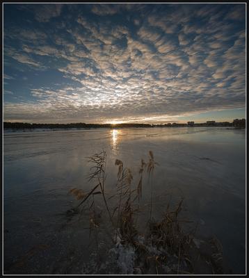 Во льду...(6)