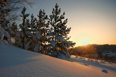 Пока, Январь! Январь закат Алтай