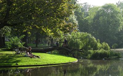 Необычный отдых в Амстердаме. Вольденпарк. амстердам, путешествия, парк, вольденпарк, отдых, природа, озеро, дерево