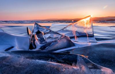 Байкальские акулы на рассвете