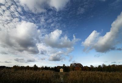 Дом на болоте. дом.камыши.облака