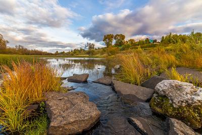 Осень на речке. речка вода камни трава осень