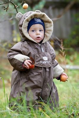 Охотник за яблоками Дети природа натура
