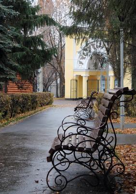 Люблю я осень) (1) осень парк скамейка