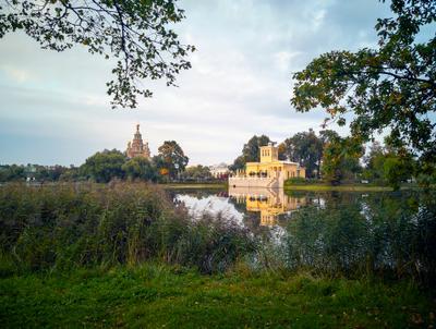 В одном из парков Петергофа.