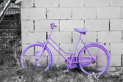 *** велосипед лето сиреневый черно-белый