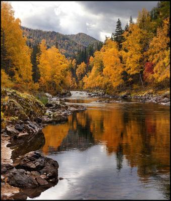Река в Золотых Берегах #3 Алтай Осень Кумир Река Вода Горы Каньон Золото