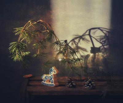 *** натюрморт зима тень сосна ветка