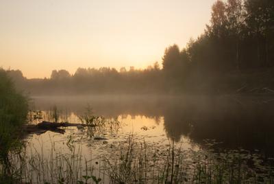 Туманное утро туман утро река рассвет