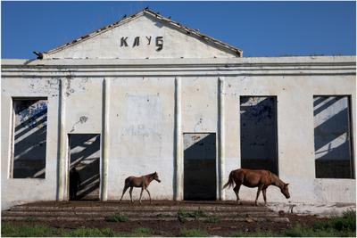 Клуб двух коней Бурятия Бичурский район село Окино-Ключи семейские старообрядцы